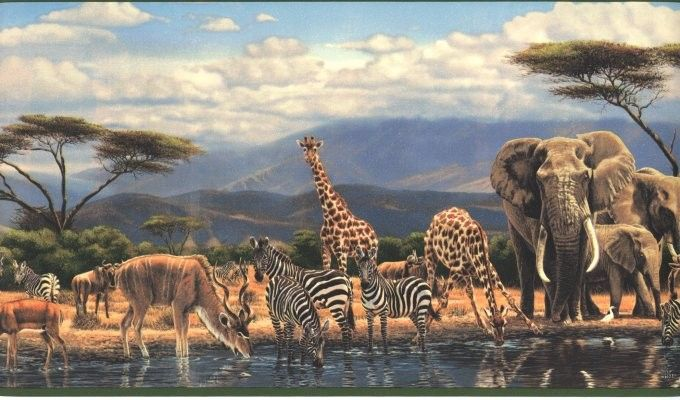 Jungle Animal Wallpaper Africian Wall Paper Boader Border Gu92152b
