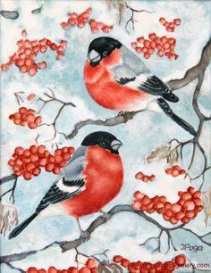 Frosty December Bullfinch Watercolor on canvas