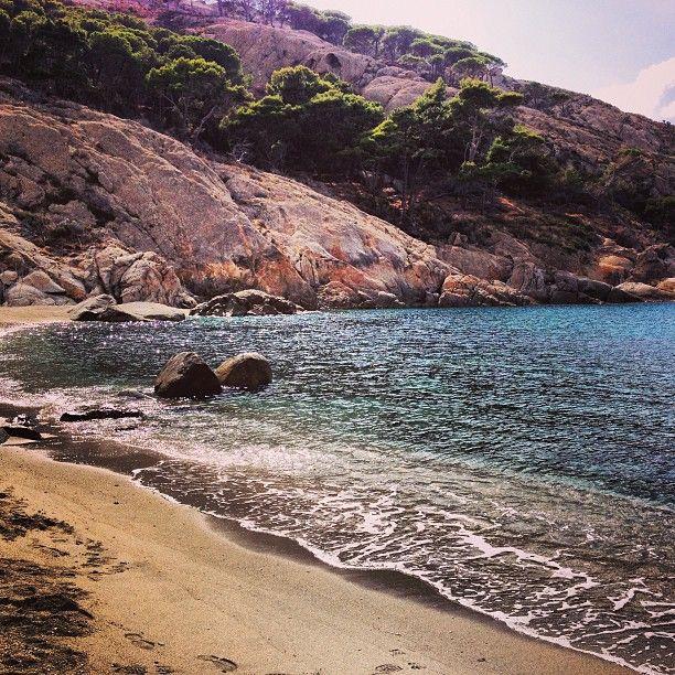 L'Isola di Montecristo ed il suo splendido mare ... intoccabile