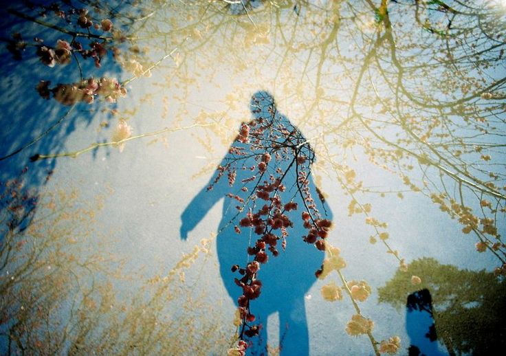 LOMO LC-Wide - 春と私の影 - 毎月1日はセルフポートレートの日 UltaraMax400 - Camera Talk -