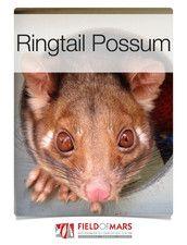 Ringtail Possum app. $1.99