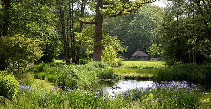 Natural Pond - Tom Stuart Smith