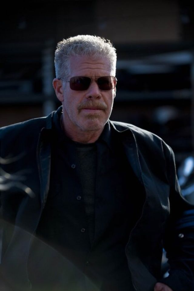 Ron Perlman for the hero or villain in Expendables 4. He's good at both. When it comes to older badasses of the 80s and 90s and now, he's the obvious choice for the franchise. Beat out Nicolas Cage, Dwayne Johnson and Vin Diesel for the role of Hellboy. No one can play Clay Morrow on Sons of anarchy or Hellboy like he can. Plus he's worked with Wesley Snipes before on Blade 2, Dolph Lundgren on skin trade, and Danny Trejo on sons of anarchy, bad ass, etc.