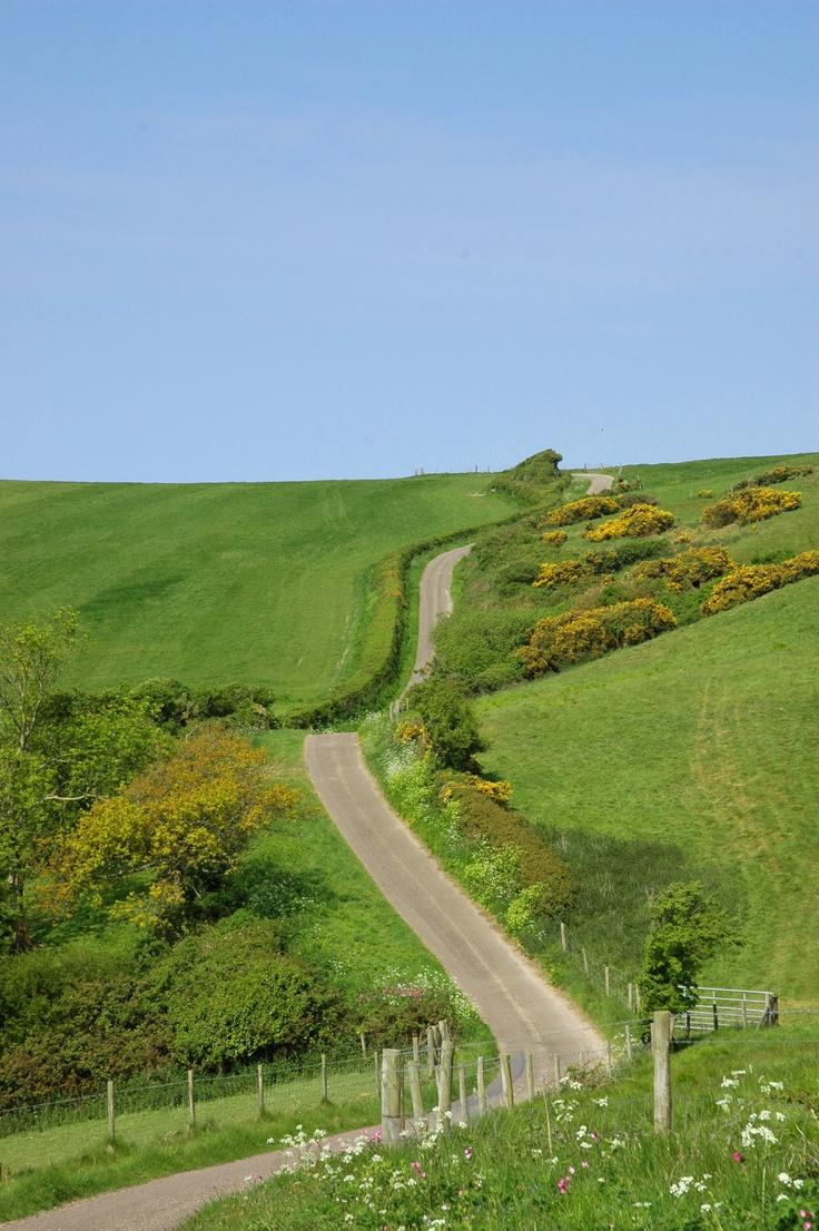 Abbotsbury.  Dreamy Dorset Countryside!