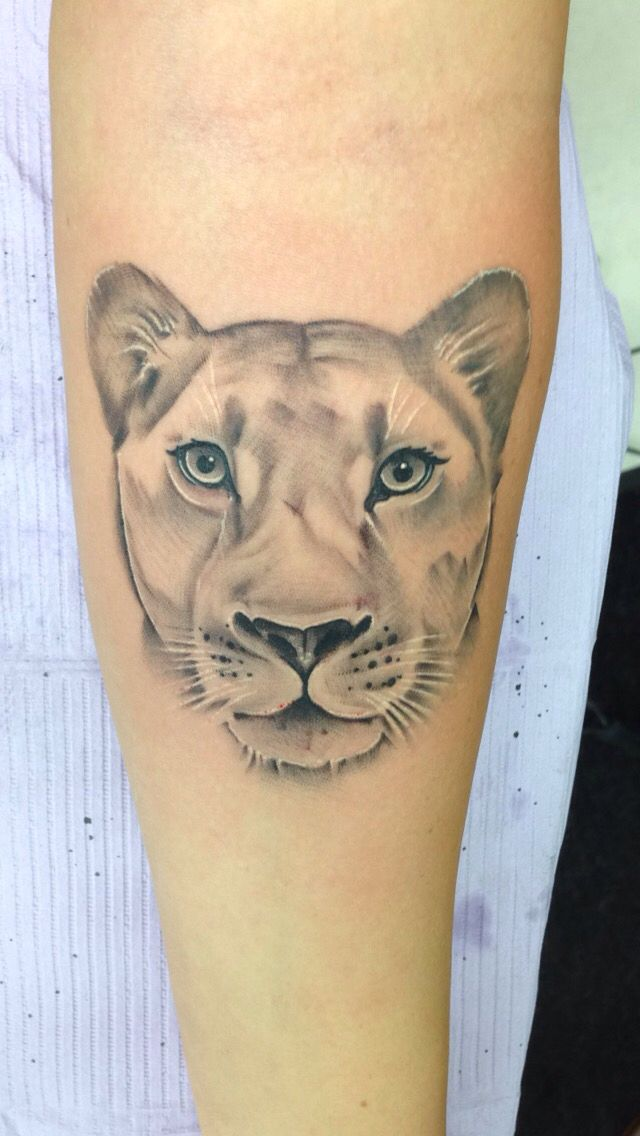 Lioness tattoo on forearm