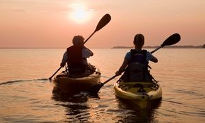 Groupon - One or Two Half-Day Kayak Rentals at Belle Harbour Marina (Up to 56% Off) in Tarpon Springs. Groupon deal price: $20