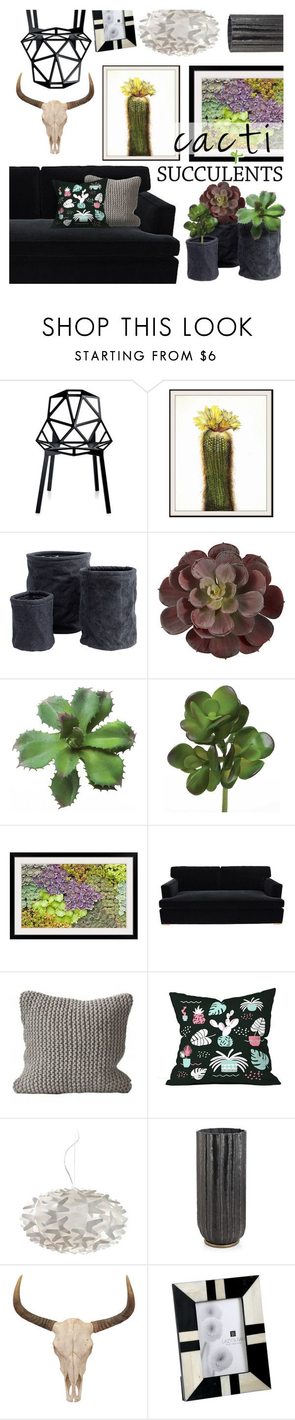 """""""Cacti & Succulents"""" by stacey-lynne on Polyvore featuring interior, interiors, interior design, home, home decor, interior decorating, Magis, WALL, Barclay Butera and Homage"""