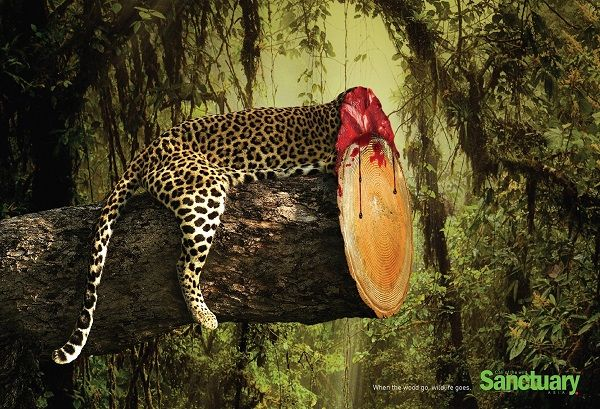 """Shocking Print Ads Show How Habitat Destruction Affects Wildlife"" (photo essay) (via DesignTAXI) (10 December 2014) Sanctuary India has created a series of ""shocking concept print ads"" that show ""how habitat destruction affects wildlife."""