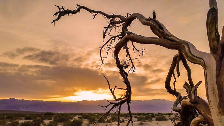 desert sunset death - photo #30