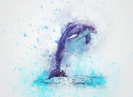 Dolfijn, Springen, Dierlijke, Kunst