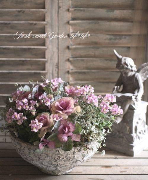 tef*tef*寄せ植え<BR>2014 * no.60 *<BR><BR>『アンティーク葉牡丹×ネメシア』 | 寄せ植え | | Junk sweet Garden tef*tef*