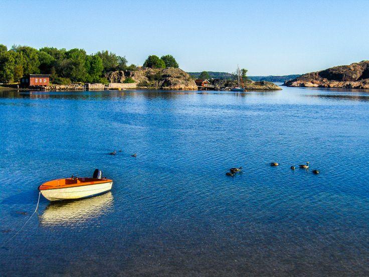 Hos oss på Hafsten kan du hyra ett flertal olika sorters båtar. Vi har motorbåtar, roddbåtar, kajaker, kanoter och trampbåtar. Välj din favorit och utforska bohusläns skärgård.