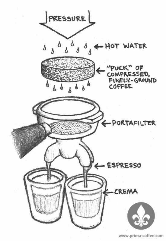 What is espresso? This diagram and article kick off our beginner's guide to espresso by answering that very question. http://prima-coffee.com/learn/article/espresso-101