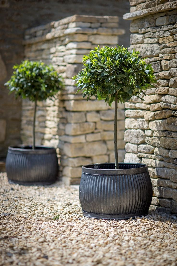 Planters & Pots | Galvanized metal containers with standardized shrubs