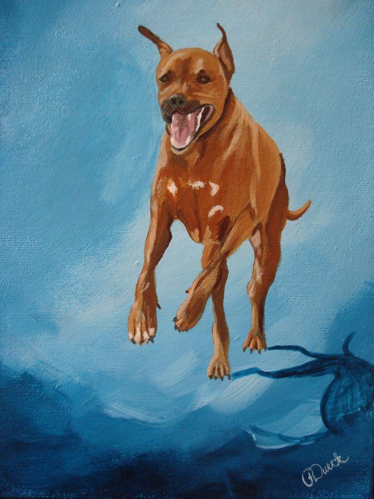 "SOLD ""Axel"" - Rhodesian Ridgeback. 6"" x 8"" acrylic. Happily living in Walnut Creek, California."