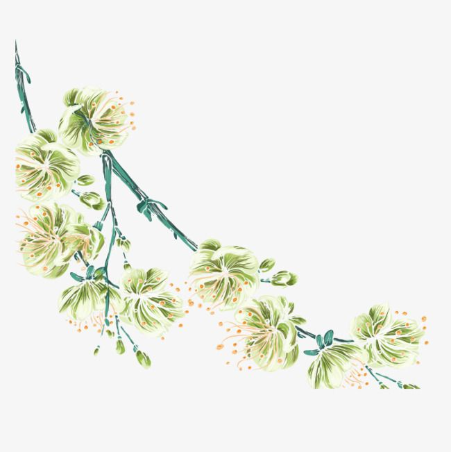 Hand Painted Watercolor Spring Flowers In 2020 Flower Graphic
