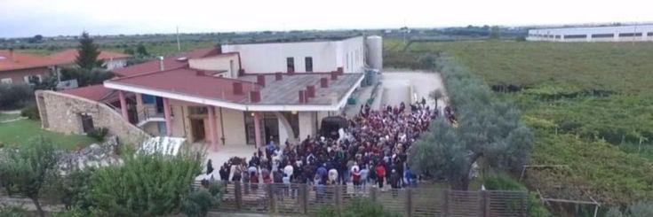 Duizenden rode wijn liefhebbers zakken af naar de gratis rode wijn fontein in Italië