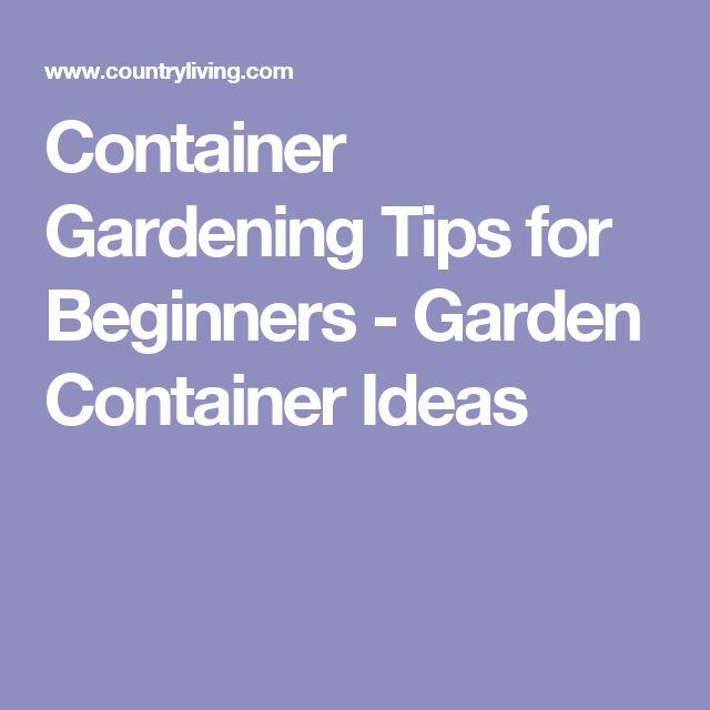 76 best beginner gardening images on pinterest - Container gardening for beginners practical tips ...