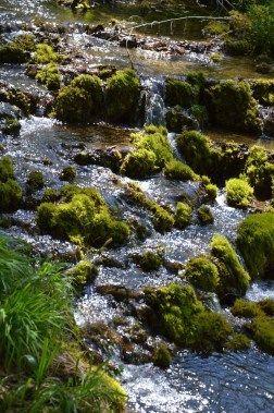 Mini-Wasserfälle im Altmühltal (1 Std / 3 km bei Greding)