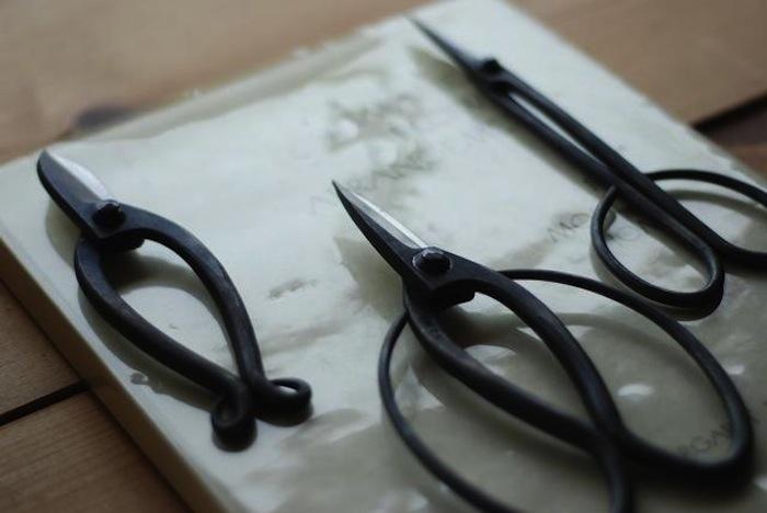 Gardening Scissors from Tortoise in LA, Gardenista