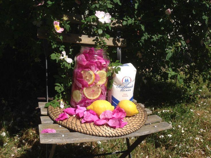 Ich habe die Blüten der Kartoffelrose verwendet. Sie ist oft in Parkanlagen und in Blumenrabatten der Städt zu finden