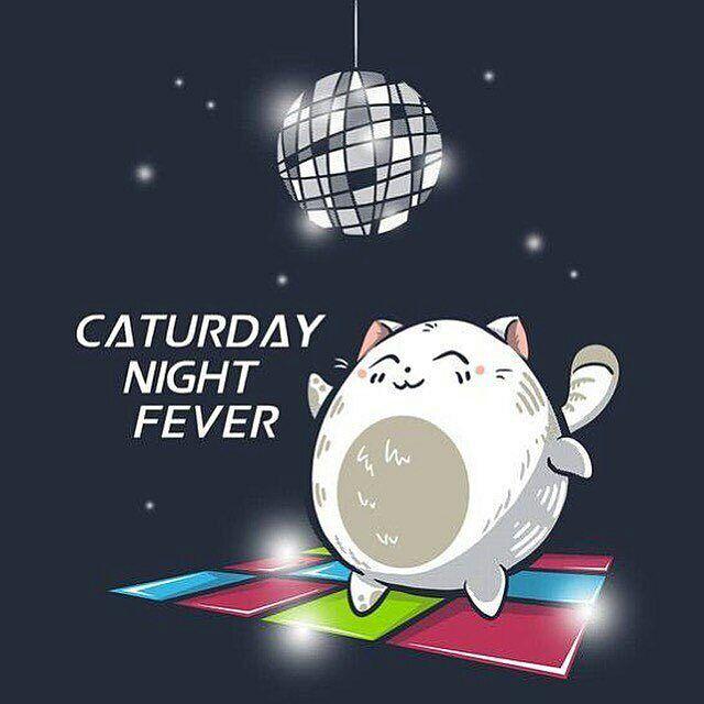 @Regrann from @gatosmurcia - ¡Feliz sábado / #caturday! Además de aprovecharlo con los gatos que ya tengáis en casa, no olvidéis a todos esos peludos que siguen sin hogar y que tanto nos necesitan! Os recordamos las formas de colaborar con nosotros para ayudarlos: : --- Si quieres ayudarnos en la esterilización y el cuidado diario de nuestras colonias felinas, por solo 1 euro al mes puedes hacerlo. Únete a teaming pinchando aquí! https://www.teaming.net/s-o-s-gatosmurcia --- También puedes…