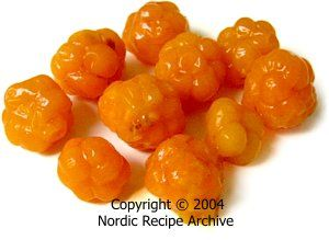 Cooking ingredients: Finnish berries (edible and poisonous) - Nordic Recipe Archive
