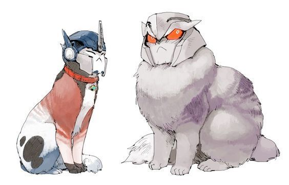 Tfp catformers x reader - optimus x reader x megatron
