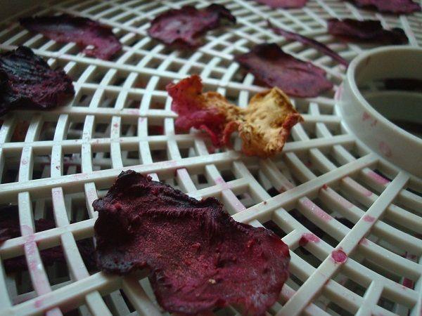 Sušené chipsy z červené řepy a celeru místo nezdravých brambůrek. Příprava je snadná | Nazeleno.cz