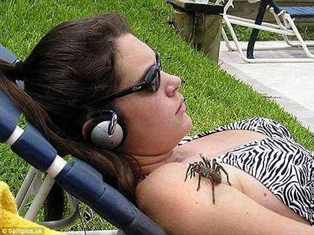 A sunbather, engrossed in her music, fails to notice a tarantula is sat on her shoulder...