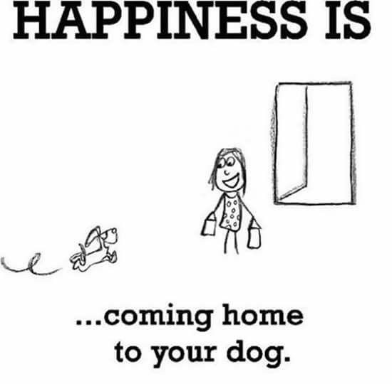 25+ Best Ideas About Coming Home Quotes On Pinterest
