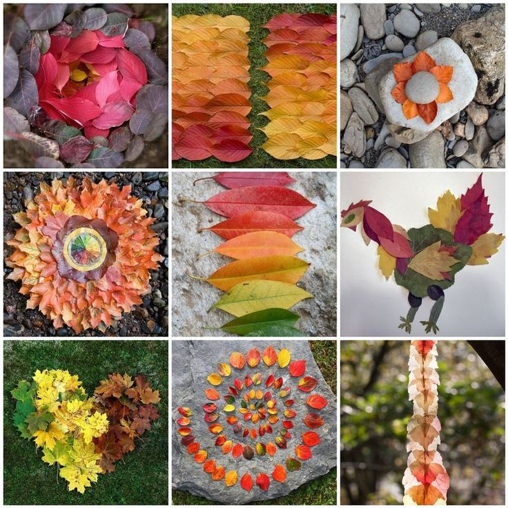 fall leaves create art pictures - collect and create with the kids - pictures as ideas because there are no instructions