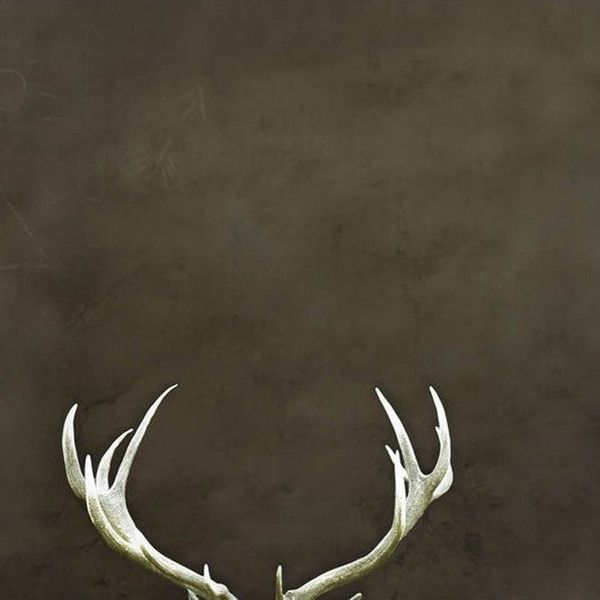 Deer Antlers Rustic Home Decor Dark Brown Large Wall Art Man Cave Art ($30) ❤ liked on Polyvore featuring home, home decor, wall art, dark olive, home & living, home décor, wall décor, wall hangings, silhouette wall art and rustic home decor