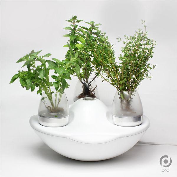 Pod   Indoor Gardening System By Casey Lin, Adam Ben Dror, Robert Skene