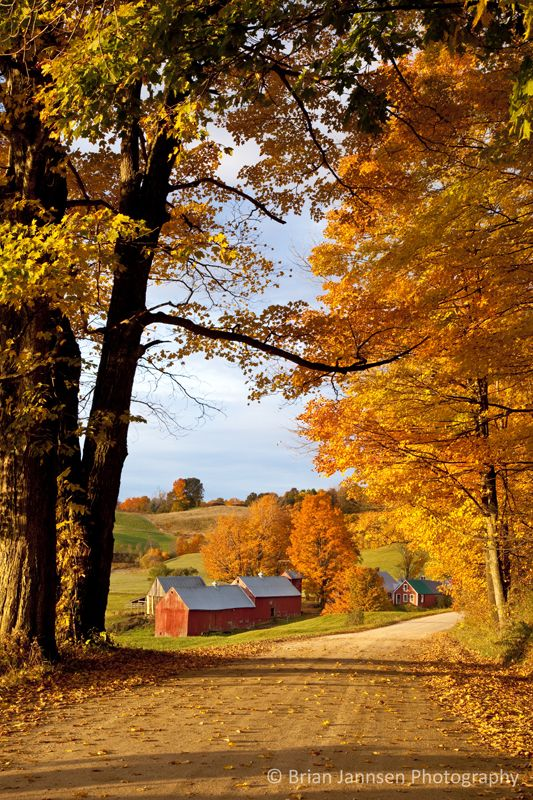 Autumn morning at the Jenne Farm near South Woodstock, Vermont, USA. © Brian Jannsen Photography