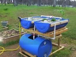 Image result for aquaponics fish tank diy