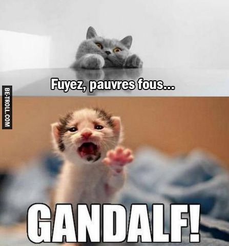 Fuyez, pauvres fous… | Be-troll