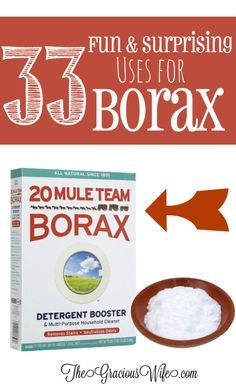 33 Surprising and Fun Uses for Borax - Cleaning, crafts, laundry, and more! So cool! | kitchen hacks | diy crafts | life hacks From TheGraciousWife.com