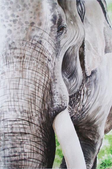 Painting on Canvass - Make Elephant BK