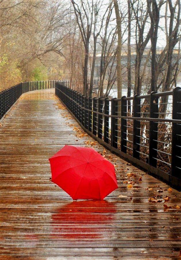 Rain*