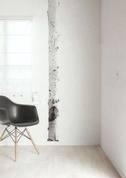 Kamerhoge+muursticker+met+een+fotografische+print+van+een+mooie+berkenboom.+Haal+de+natuur+in+huis!+Price+€59,95