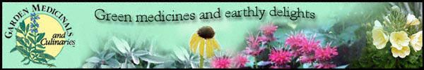 Garden Medicinals and Culinaries banner - herbs and flowers: echinacea, primrose, sage, and bergamot