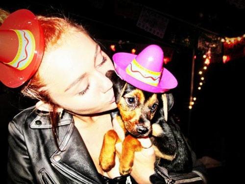 """Miley Cyrus, también destaca como Mónica Cruz por tener una gran manada, a la que la semana pasada se unió un nuevo miembro más, un cachorrito al que encontró mientras paseaba por delante de un centro comercial, y no dudó en darle un nuevo hogar. """"Le abandonaron en una caja enfrente de un Walmart. No entiendo cómo la gente puede ser tan cruel. Por eso le he llamado Happy"""", escribía en su cuenta de Twitter."""