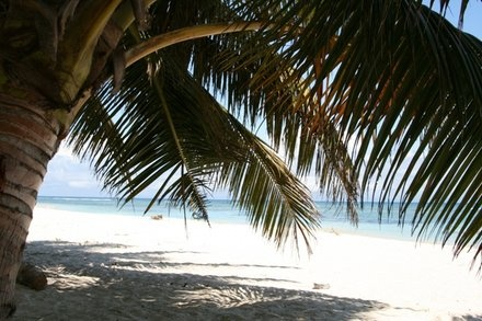 Some of the world's finest white sandy beaches can be found can be found on the island.