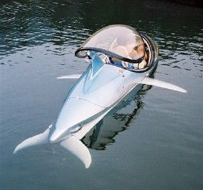 personal submarine. They come in dolphin shape or tuna. That way you can explore the inside of fishermens nets.