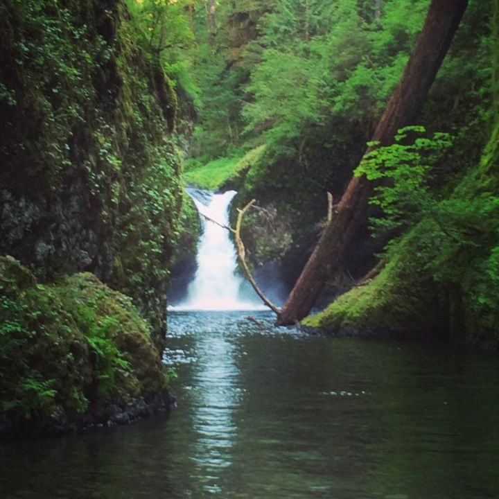 Eagle Creek Trailhead in Cascade Locks OR