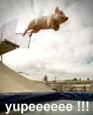 I jumped...no I was pushed..no I jumped at http://iread1966.wordpress.com