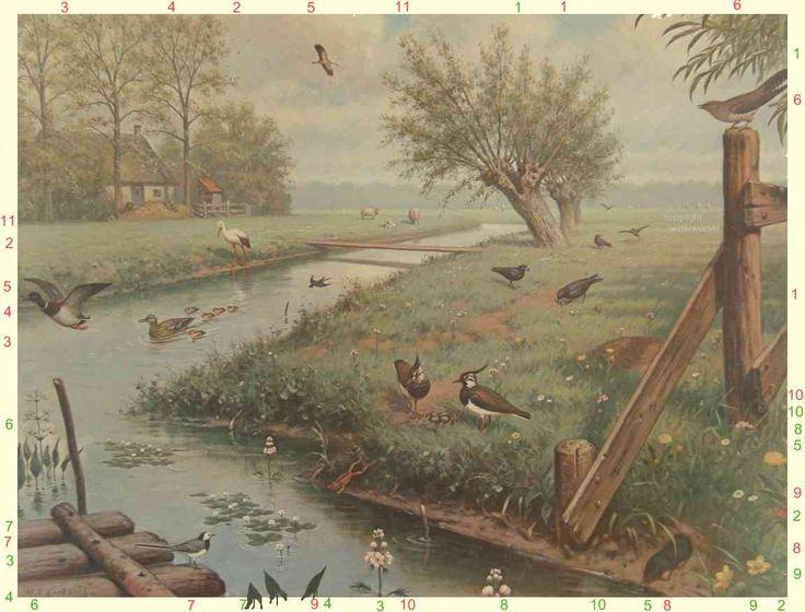 Google Afbeeldingen resultaat voor http://www.waterwereld.nu/images/weide.jpg