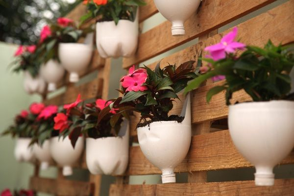 Na mesma linha de reciclagem, garrafas pet pintadas e cortadas viram vasos para um jardim suspenso