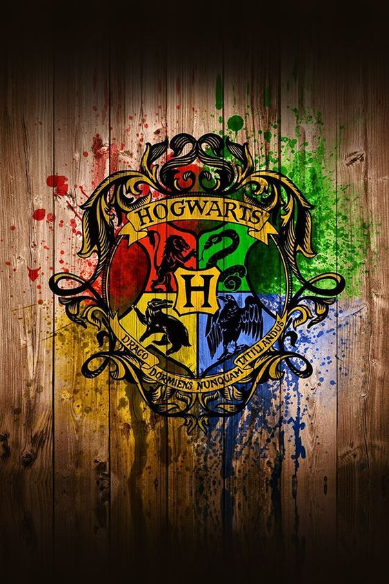 Are you a lion-hearted Gryffindor, or do your loyalties lie with the dark side? It's time to don the sorting hat and face your destiny...